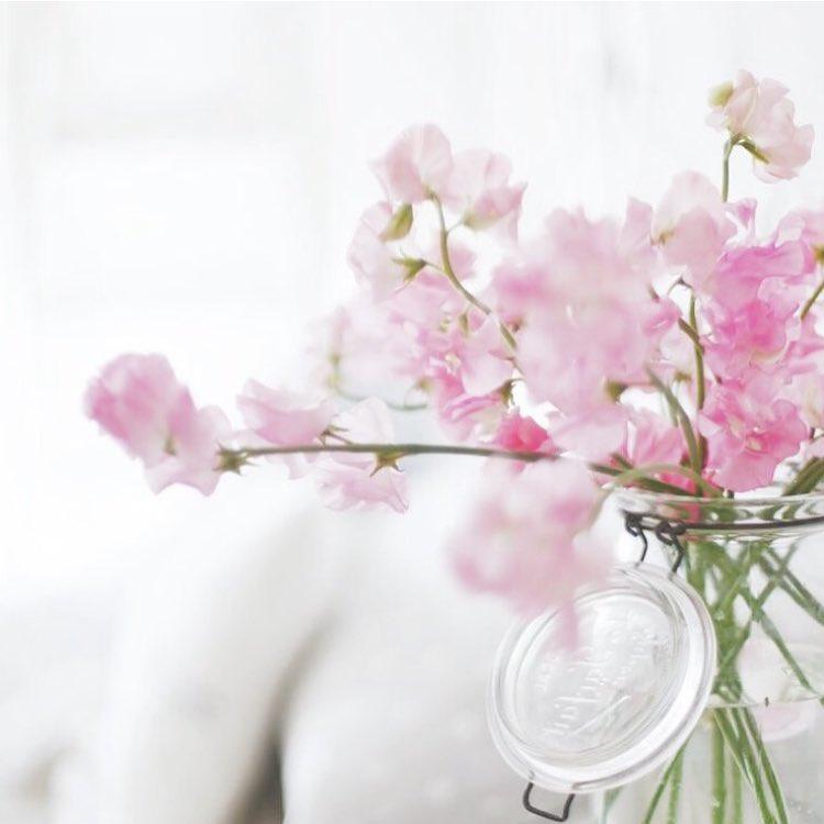 Happy Sunday !  flowers flower petal petals nature beautifulhellip