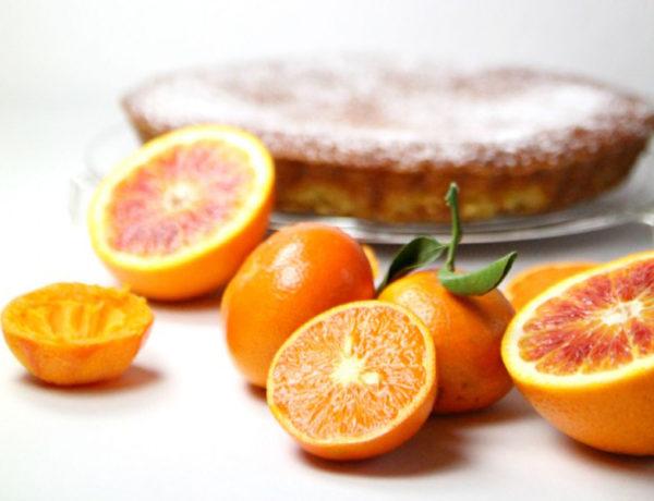 gateau-clementines-