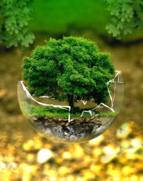Kering Développement durable